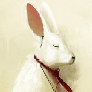 吃肉的兔子